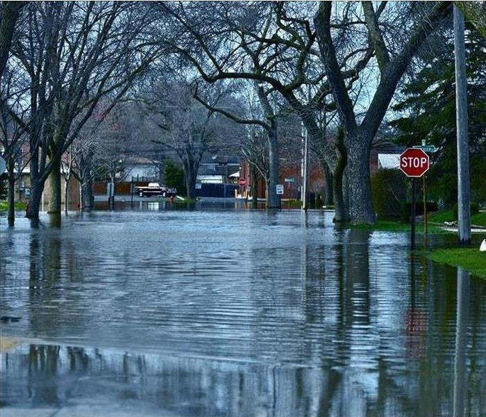 Water Damage When a Shields Property Sustains Flooding Damage, Call SERVPRO