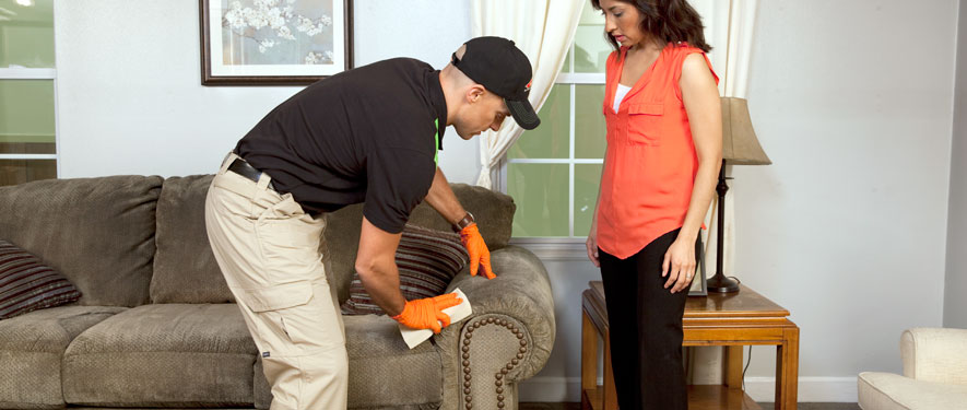 Saginaw, MI carpet upholstery cleaning