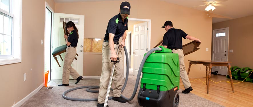 Saginaw, MI cleaning services